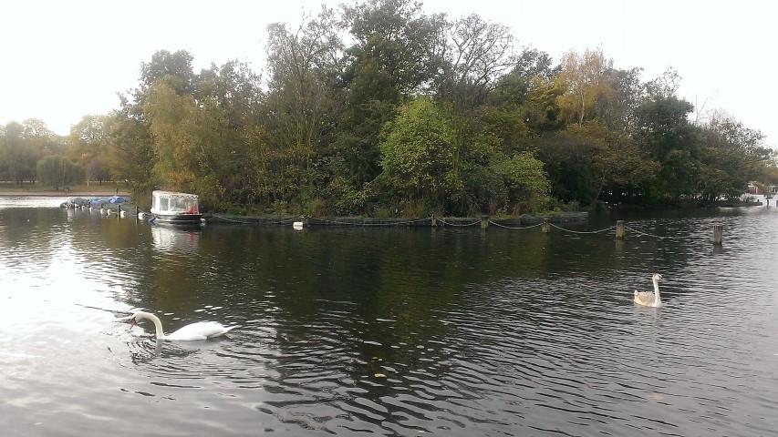Londra - Hydepark